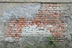 Tom gammal textur för tegelstenvägg Målad bekymrad väggyttersida Grungy breda Brickwall Royaltyfri Bild