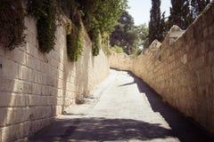 Tom gata av Jerusalem, Olive Mountain, Israel Arkivfoton