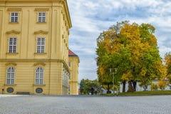 Tom gata med stenläggningstenen och med det färgrika trädet och blå himmel i Wien Österrike på hösten royaltyfri bild