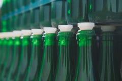 Tom grön flaskmodell Royaltyfri Foto