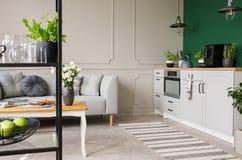 Tom grön vägg med kopieringsutrymme i elegant kök med den vita möblemang, växter och kaffemaskinen i stilfull liten lägenhet med royaltyfri fotografi