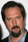 Tom Green Royaltyfria Foton