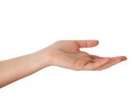 tom hand royaltyfri fotografi