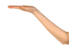 tom hand som sträcks ut Royaltyfria Foton