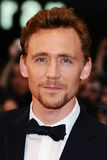 Tom Hiddlestone Royalty Free Stock Image