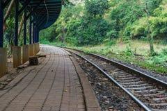 Tom järnvägspår och plattform i grön skog Arkivfoto