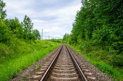 Tom järnvägsspår i grön skog Royaltyfria Bilder