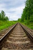 Tom järnvägsspår i grön skog Royaltyfri Fotografi
