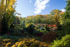 Tom Kubota Garden Royalty Free Stock Photos