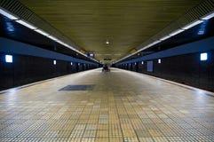 tom läskig stationsgångtunnel Royaltyfri Foto