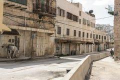 Tom och övergiven gata i den upptagna staden av Hebron royaltyfri bild