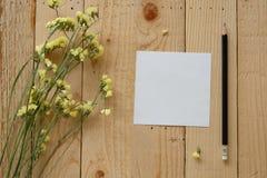 tom paper white Arkivbilder