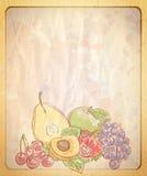Tom pappers- bakgrund för tappningstil med den grafiska illustrationen av blandade frukter Fotografering för Bildbyråer