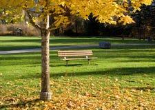 tom park för bänk Royaltyfria Foton
