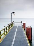 Tom pir i hamn Stålspisgallerbräde Den svarta kormoran sitter på lampan Arkivfoton