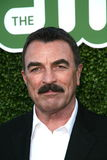 Tom Selleck Royalty Free Stock Photo