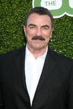 Tom Selleck Stock Photo