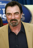 Tom Selleck Stock Photography