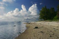 tom strand Arkivfoton