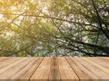 Tom tabell för träbräde framme av suddig bakgrund Brun wood tabell för perspektiv över suddighetsträd i skogbakgrund royaltyfri fotografi