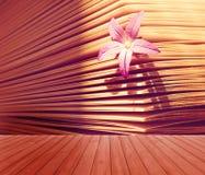 Tom trädäcktabell med den härliga lilla blomman i en bokbakgrund Ordna till för produktskärmmontage Arom av storen Royaltyfri Bild