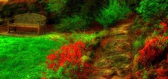 tom trädgård för bänk Arkivbilder