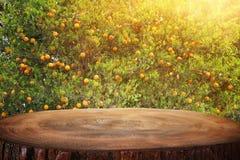 Tom trätabell framme av bakgrund för orange träd för bygd produktskärm och picknickbegrepp royaltyfri bild