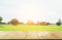 Tom trätabell med suddig gräsplan och naturlig himmel Arkivbilder