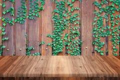 Tom trätabell med trä- och vinrankaväggbakgrund royaltyfri fotografi
