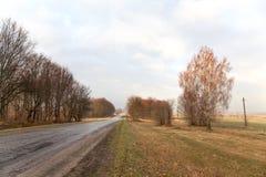 Tom väg för härlig bygd, skog för björkträd, molnigt väderlandskap arkivfoto