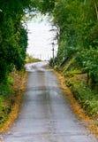 Tom väg till det Muckross godset, Irland royaltyfri fotografi