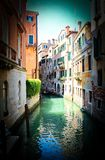 Tom Venedig kanalkaraktärsteckning royaltyfri fotografi