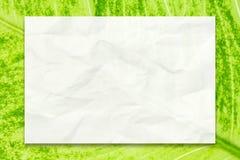 Tom vitbok på grön bladbakgrund för affärsutbildnings- och kommunikationsbegreppsdesign royaltyfri foto