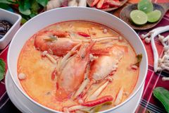 Tom yam kung or Tom yum in a white cup royalty free stock images