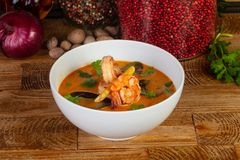Tom Yum délicieux images stock