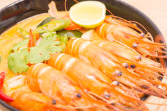 Tom Yum Goong, Thai hot spicy soup shrimp on Black Cup Stock Images