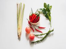 Tom yum herbal ingredients Royalty Free Stock Photo