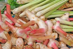 Tom yum ingredients stock image