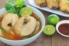 Tom Yum listrou peixes do snakehead, alimento tailandês fotografia de stock