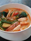 Tom Yum Soup Royaltyfria Foton