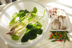 Tom yum spicy raw vegetables with 5 mushrooms Royalty Free Stock Photo
