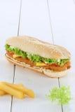 Toma dello spazio della copia del copyspace dell'hamburger dell'hamburger del pollo di Chickenburger Fotografia Stock