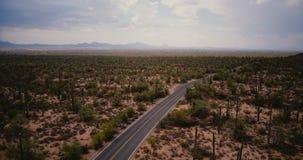 Toma panorámica del abejón dejada sobre el camino de enrrollamiento escénico del desierto en fondo atmosférico grande del campo d almacen de metraje de vídeo