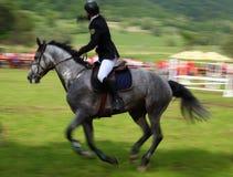 Toma panorámica del jinete del caballo fotografía de archivo
