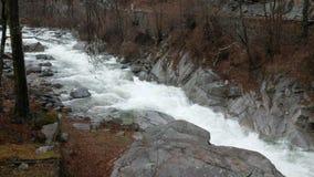 Toma panorámica en el río adentro por completo durante la lluvia almacen de metraje de vídeo