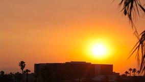 Toma panorámica tirada de puesta del sol hermosa sobre un edificio y palmeras almacen de video