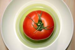 Tomaat stock afbeelding