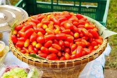 Tomaat Stock Foto's