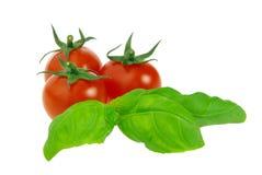 Tomaat en basilicum Stock Foto's