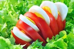 Tomaat en ei op groene salade Royalty-vrije Stock Afbeelding